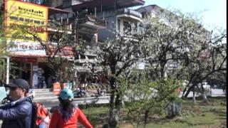 Phượt Sa Pa : Cảnh đèo Sa Pa và ngắm cảnh vòng quanh thị trấn ...