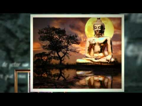 Video of Buddha HD Wallpaper and Images
