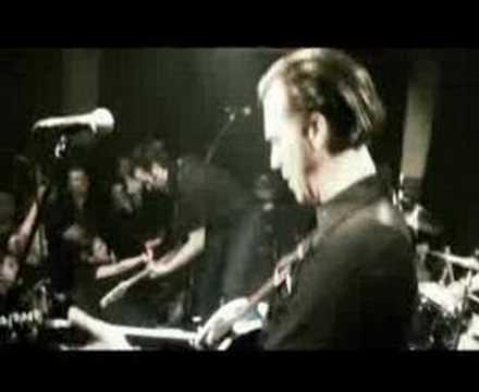 BLACK RAVEN - Red Light (Spells Danger)