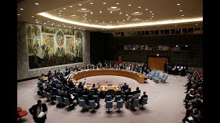 UN Security Council unanimously adopts resolution on Syria ceasefire (Streamed Live)