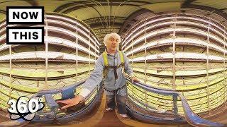 360 TOUR - AeroFarms: The Future of Farming | Unframed by Gear 360 | NowThis