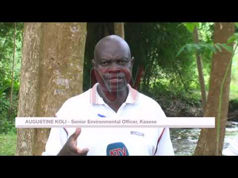 Constant flooding in Kasese blamed on poor environment
