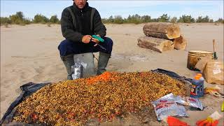 Какие бойлы для ловли сазана осенью на волге