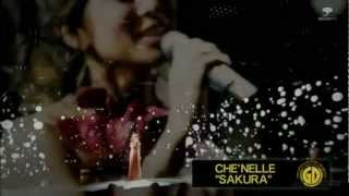 Che'Nelle Diaries_GOLD DISC.mov