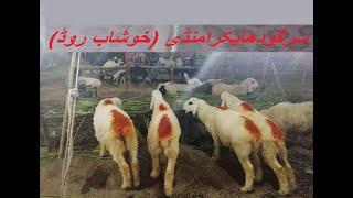 khushab cow mandi - ฟรีวิดีโอออนไลน์ - ดูทีวีออนไลน์ - คลิป