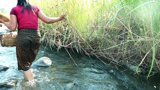 Primitive In forest one - woman finding Catching Frog for dog Si - Cook Frog Catching crocodile one