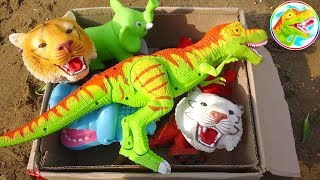 Open the toy box - Discover dinosaurs and funny animals - G301M ToyTV