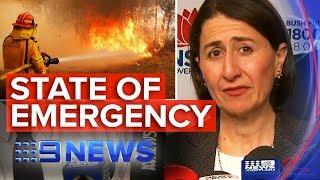 State of emergency declared in NSW | Nine News Australia