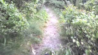 preview picture of video 'Alemania - Septiembre 2014 - Ruta por la selva negra (2)'