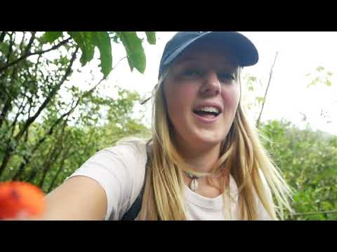 Vlog Video Costa Rica