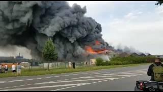 Brand Firma Fehr Umwelttechnik Wolfen Feuerwehreinsatz vom 08.08.2017