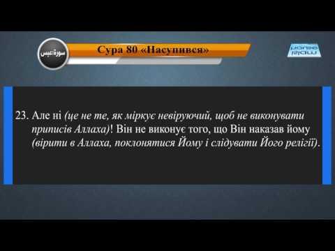 Читання сури 080 Абаса (Він насупився) з перекладом смислів на українську мову (читає Мішарі)