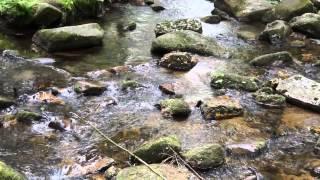 Шум воды - звуки природы
