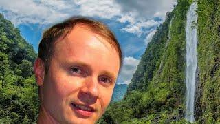 ✅Выживание в джунглях в Прямом Эфире! Поиски затерянного водопада ОНЛАЙН 😃 Новый формат Стримов