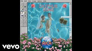 AKA - Caiphus Song