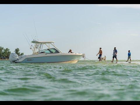 Boston Whaler 240 Vantage video