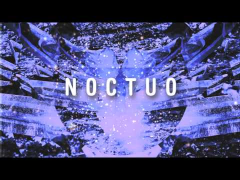 Noctuo- Rooftop