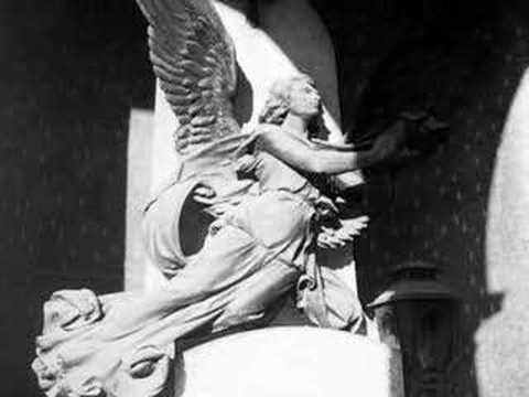 La Bellezza -   Roberto  Vecchioni