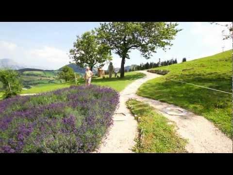 Erlebniswelten der Bergbahnen Wilder Kaiser Brixental