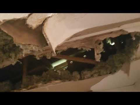 Eastman Visit - Back Rm requiring ceiling repair