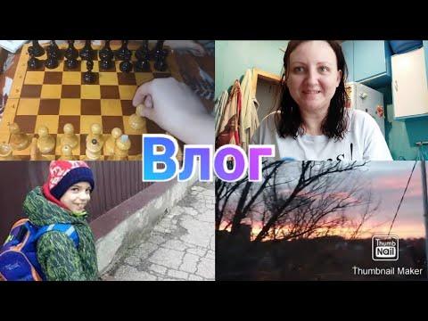 Как учатся дети / Шахматы / Рассвет / Anika Z влог