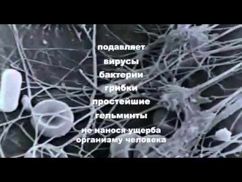 Паразиты в органах человека лечение