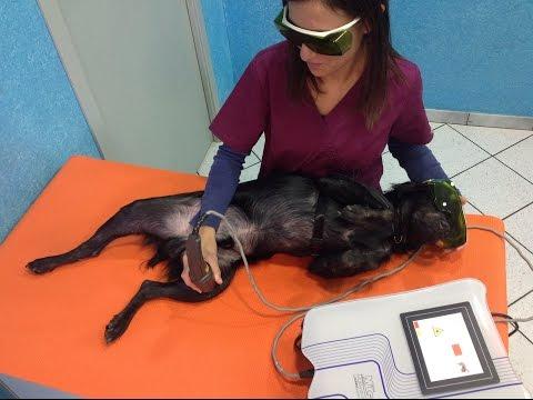 Un massaggio con lernia intervertebrale