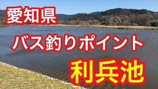 利兵池愛知県バス釣りポイントブラックバス