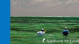 7 Degrees South, fly fishing Alphonse Island