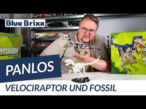Velociraptor und Fossil