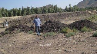 Download Video Inilah Tanah Gosong yang Disebut dalam Quran Surat Al-Qolam MP3 3GP MP4