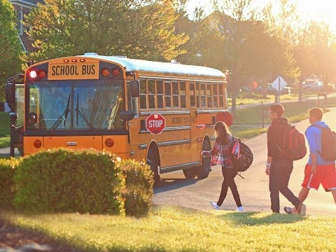 School Bus Inspections Combo A J Driving School Ltd