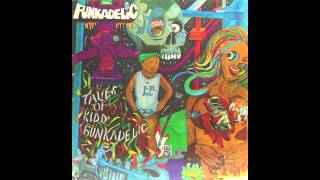 FUNKADELIC : how do yeaw view you?