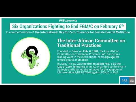 Six Organizations Fighting to End FGM/C Video thumbnail