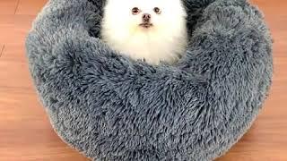 Cama de invierno para mascotas