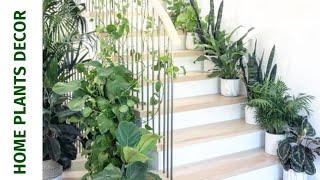 🌿Beautiful Indoor Garden Ideas. 🌿House Plant Decor.🌿