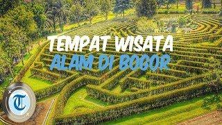 7 Tempat Wisata di Bogor yang Udaranya Sejuk, Cocok untuk Melepas Penat dan Menyegarkan Pikiran