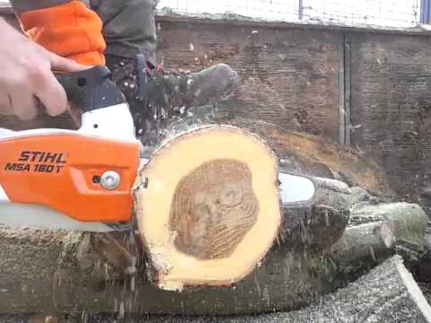 Stihl MSA 160T accu chainsaw vs. oak.