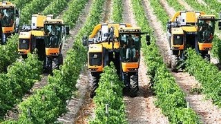 Pellenc Optimum Grape Harvester