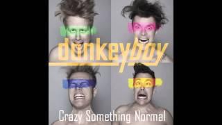 donkeyboy - Crazy Something Normal (Audio)