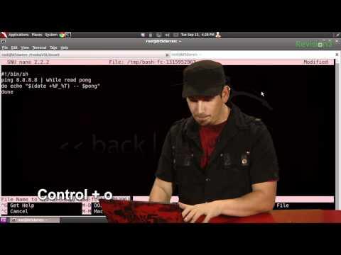 HakTip - Bash Basics: Turn Long Commands into Scripts