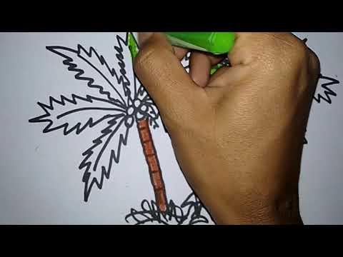 Cara Menggambar Dan Mewarnai Pohon Kelapa смотреть онлайн на Hahlife