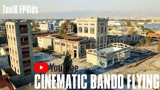 CINEMATIC BANDO FLYING | COVID19 EDITION | MAVIC VS APEX FPV