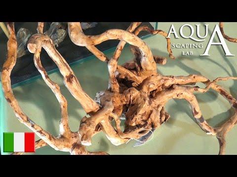 Aquascaping Lab - Legni e Radici per Acquario, trattamento Jati, Mopani, Java, Driftwood