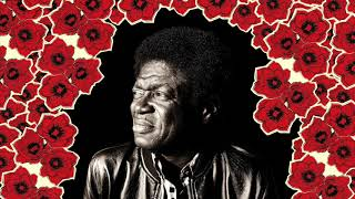 Charles Bradley - Loving You [Stripped Down Mix]