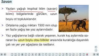 Eğitim Vadisi 10.Sınıf Coğrafya 11.Föy Yerkürenin Örtüsü 2 Konu Anlatım Videoları