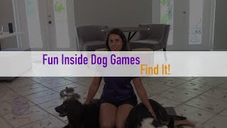 Fun, Indoor Dog Games When You're Stuck Inside