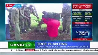 Forest scouts plant more than 2000 trees in Samburu county