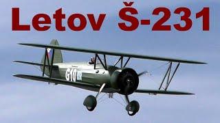 Letov Š-231, giant scale RC biplane, Nesvacily 2020