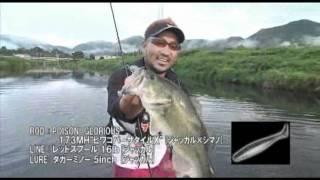 大漁生活(TAIRYOU SEIKATSU) Vol.52(1/2)